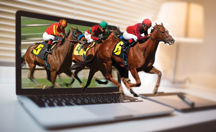 See The New Sites for Horse Racing Bets Online Today